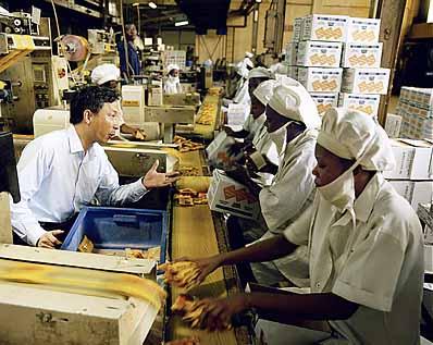 NIGERIA / Lagos / 04.2007  L'ingénieur Yechang Wang est arrivée de Chine au milieu des années 1990. Il dirige à Lagos l'usine Newbisco, qui produit chaque jour 70 tonnes de biscuits. L'usine, fondée par les Britanniques avant l'indépendance de 1960, était en faillite avant sa reprise en 2001 par l'homme d'affaires Y. T. Chu.